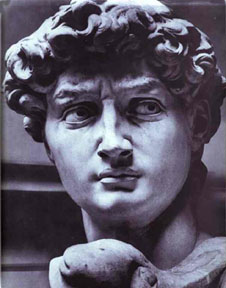 david michelangelo and donatello In module 5 you considered three statues of david, those of donatello, verrocchio and michelangelo we are now introduced to yet another david, that by gian bernini compare bernini's david.